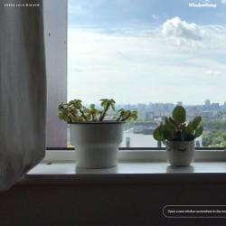 پنجرههایی رو به جهان | London, UK