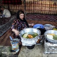 جشنواره ملی آش زنجان | عکس