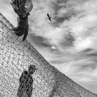 عکسهای موبایلی بخش چهارم | بند و پرواز در یک قاب - یگانه اسفندیاری نیا