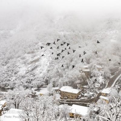 ماسوله برفی | عکس