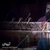 گزارش تصویری تیوال از کنسرت علیاصغر عربشاهی و کوارتت تار / عکاس: سارا ثقفی | علی اصغر عربشاهی