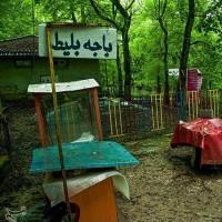 عباس آباد؛ بهشهر   عکس