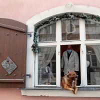 پنجره و بالکنهای جهان در روزهای کرونا   پراگ، چک
