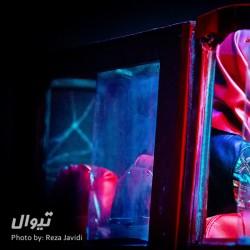 نمایش هفتمین جان سگ | عکس