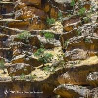 دره شیرز | عکس