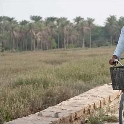 فیلم تاج محل | عکس