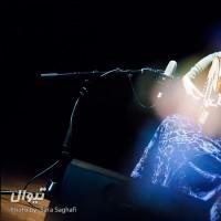 کنسرت چند شب عود (شب دوم) | عکس