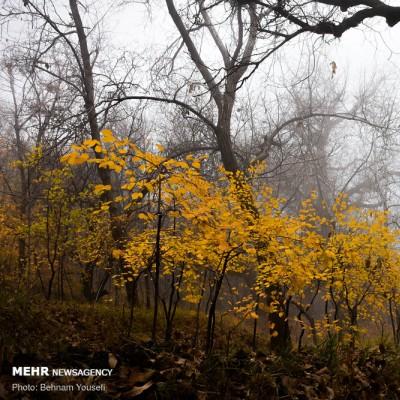 روستای «وفس» ، ماسوله استان مرکزی | عکس