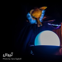 گزارش تصویری تیوال از نمایش گربهای در قصر ملکه / عکاس: سارا ثقفی | عکس