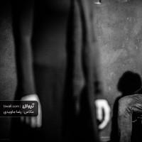 نمایش سلول خاکستری | گزارش تصویری تیوال از نمایش سلول خاکستری / عکاس: رضا جاویدی | عکس