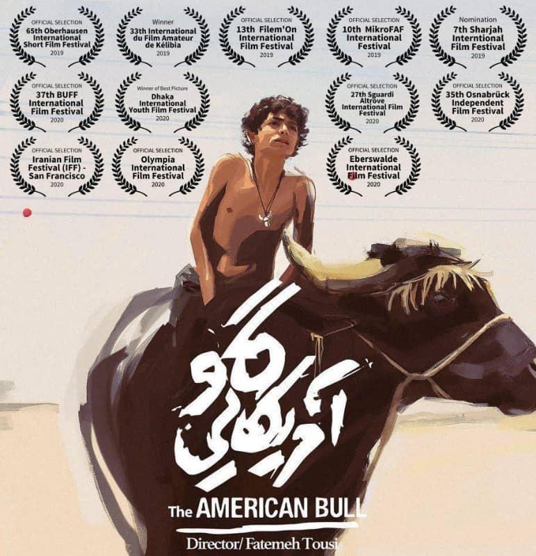 «گاو آمریکایی» به ۳ جشنواره جهانی راه یافت | عکس