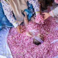 جشنواره ملی گل غلتان؛ کاشان | عکس