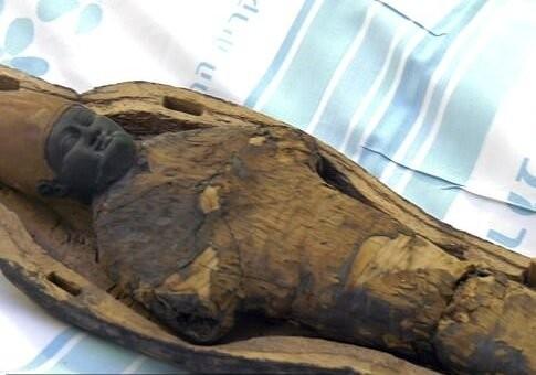 کشف یک مجسمه مومیاییشده مصری | عکس