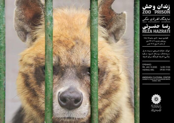 عکس نمایشگاه زندان وحش