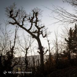 طبیعت روستای سیدان | عکس