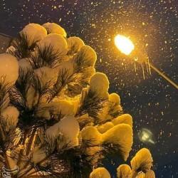 بارش برف؛ خلخال | عکس