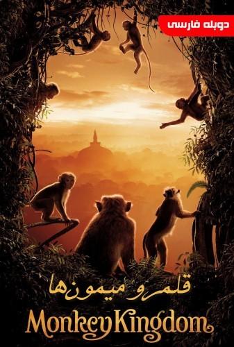 عکس مستند قلمرو میمون ها