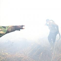 آتش سوزی در جنگلهای اندونزی | عکس