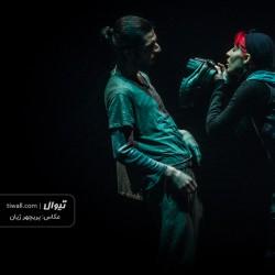 نمایش کروکودیل | عکس