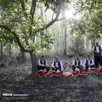 جشنواره سیر و موسیر سولان همدان  | عکس