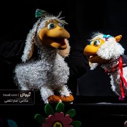 گزارش تصویری تیوال از نمایش بره شاخ دار و گرگ / عکاس: سارا ثقفی | عکس