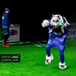 نمایش گرگ ها | عکس