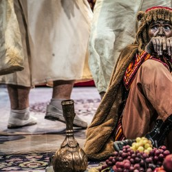 نمایش شیرهای خان بابا سلطنه | عکس