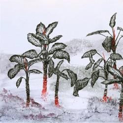 نمایشگاه پونه اوشیدری | عکس