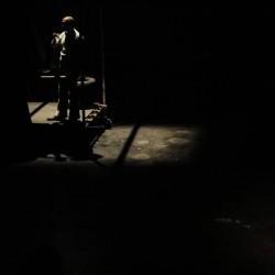 نمایش فیل در تاریکی | عکس