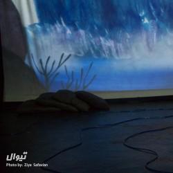 نمایش ماهی سیاه کوچولو   عکس