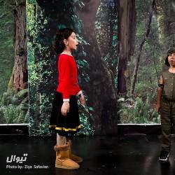 نمایش کاترپیلا و چرا خرس ها دم های کوتاهی دارن؟! | عکس