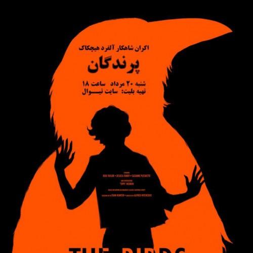 فیلم پرندگان
